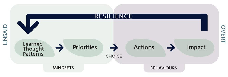 Resilience diagram